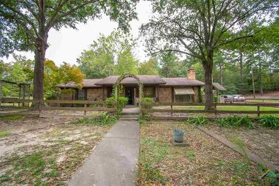 Tyler Single Family Home For Sale: 5311 Patton Circle