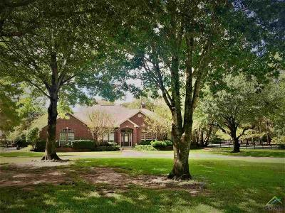Flint Single Family Home For Sale: 19420 Norfolk Dr.
