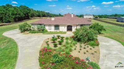 Longview Single Family Home For Sale: 161 Wiley Page Rd
