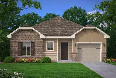 Jacksonville Single Family Home For Sale: 217 Valley View Lane