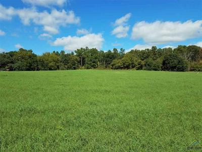 Athens Residential Lots & Land For Sale: 4730 Grand View Drive