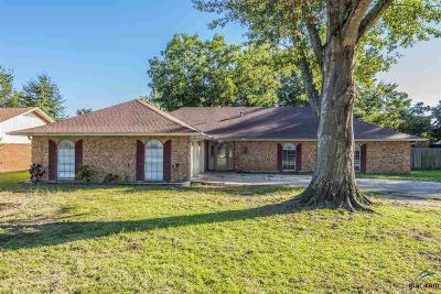 Chandler Single Family Home For Sale: 508 Sunnyside Drive