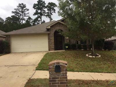 Tyler Single Family Home For Sale: 517 Skipping Stone