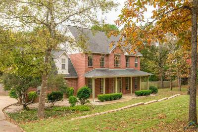 Whitehouse Single Family Home For Sale: 10606 Mountain View Rd