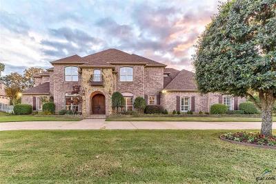 Tyler Single Family Home For Sale: 7311 Big Tree Cv
