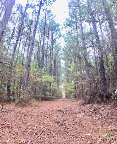 Acreage For Sale: County Road 3211