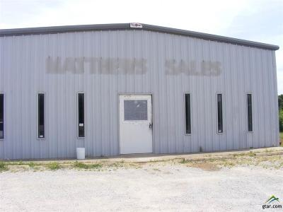 Lindale Commercial For Sale: 2700 Main St
