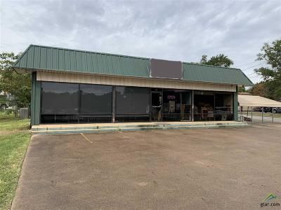 Lindale Commercial For Sale: 620 N Main St.