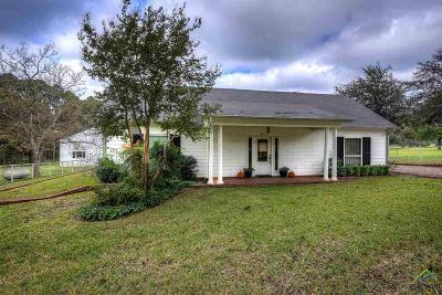 Tyler Single Family Home For Sale: 4951 Fm 346 E