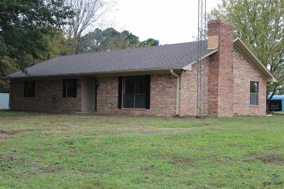Tyler Single Family Home For Sale: 11224 County Road 490
