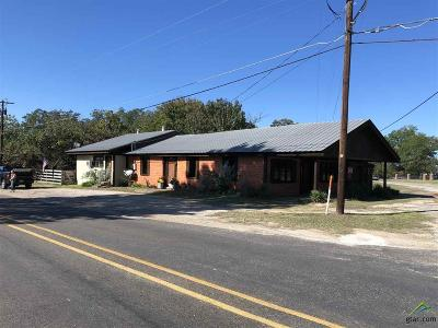 Tyler Commercial For Sale: 151 County Road 313 W