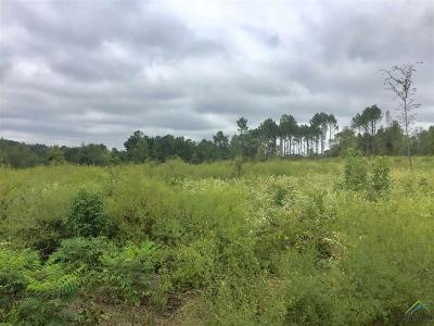 Acreage For Sale: 958 County Road 3305