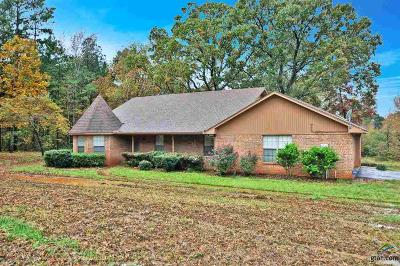 Jacksonville Single Family Home For Sale: 2029 County Road 4120