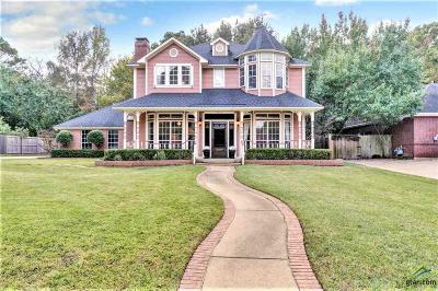 Tyler Single Family Home For Sale: 4017 Lazy Creek Drive