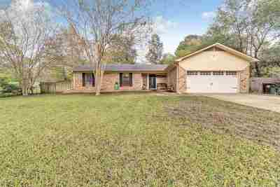 Tyler Single Family Home For Sale: 10193 Creek Bend Dr