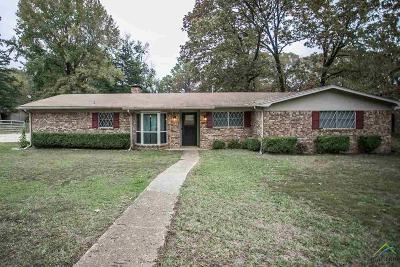 Tyler Single Family Home For Sale: 514 Ronnette Dr