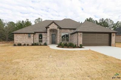 Tyler Single Family Home For Sale: 3515 Cabot Lane