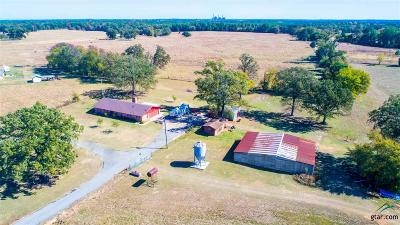 Mt Pleasant TX Single Family Home For Sale: $259,900