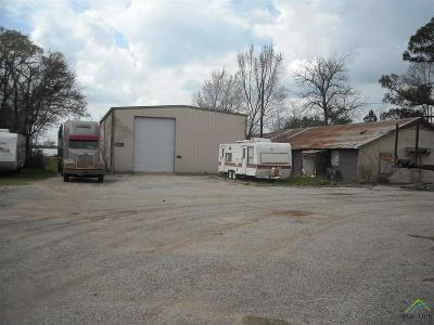 Commercial For Sale: 2005 Hwy. 69