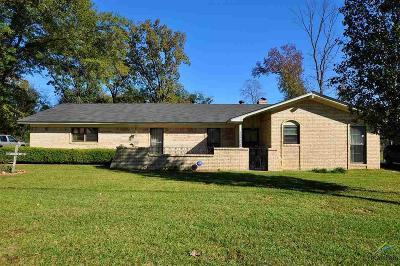 Tyler Single Family Home For Sale: 13582 Indian Dr