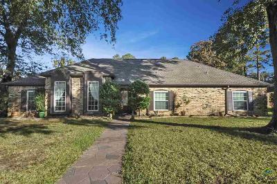Tyler Single Family Home For Sale: 312 Hampton Hill Drive