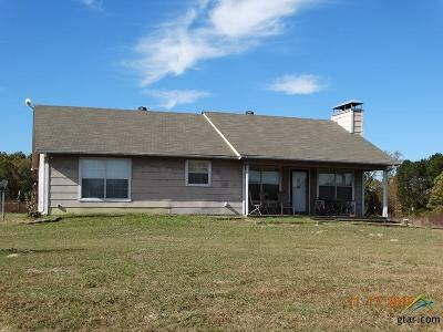 Mineola TX Single Family Home For Sale: $319,000
