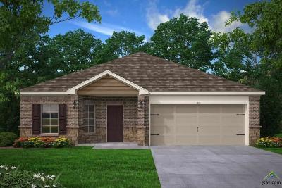 Tyler Single Family Home For Sale: 459 Utah Avenue