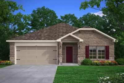 Tyler Single Family Home For Sale: 460 Utah Avenue