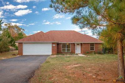 Tyler Single Family Home For Sale: 5181 Elaine Dr
