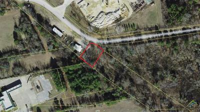 Lindale Commercial For Sale: County Road 474