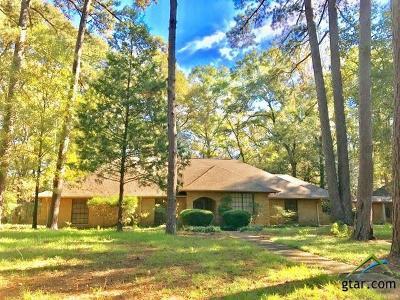 Flint Single Family Home For Sale: 18975 Falls Creek Dr.