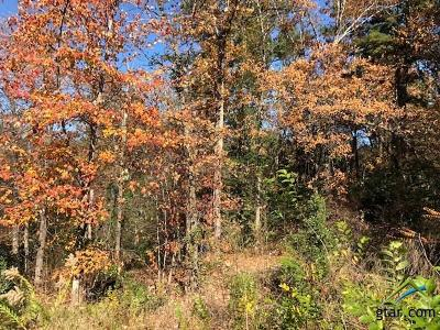 Tyler Residential Lots & Land For Sale: 2035 Stonegate Valley Drive