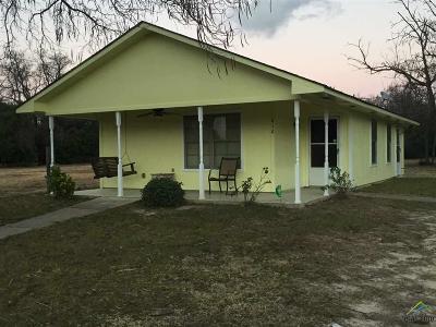 Tyler Single Family Home For Sale: 810 S Turner
