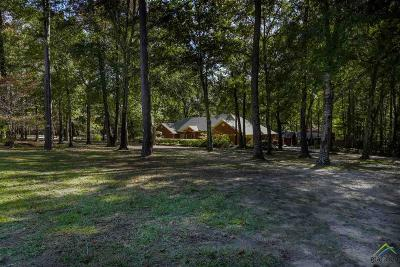 Tyler Single Family Home Contingent - Active: 11821 County Road 168
