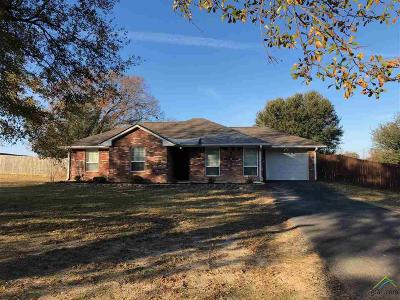 Tyler Single Family Home For Sale: 1651 County Road 1147