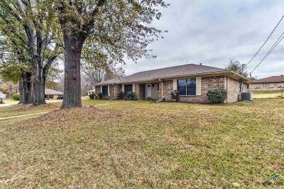 Tyler Single Family Home For Sale: 1618 Angy