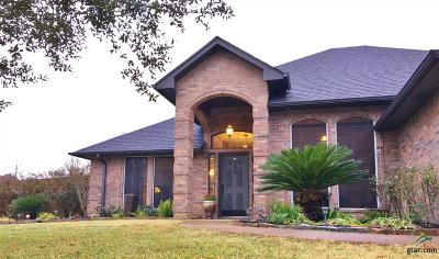 Whitehouse Single Family Home For Sale: 1719 Onyx Cove