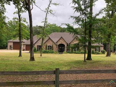 Tyler Single Family Home For Sale: 15030 Canopy Oaks Dr.