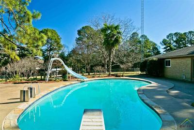Wood County Single Family Home For Sale: 3199 Fm 1801