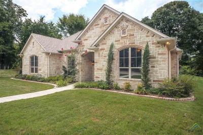Tyler Single Family Home For Sale: 3848 Hogan Dr
