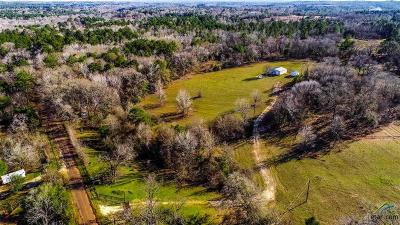 Farm For Sale: 1125 County Road 3407
