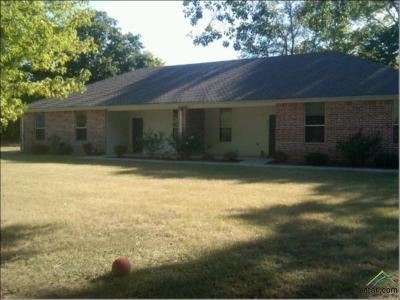 Flint Multi Family Home For Sale: 20299 Fm 2493