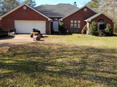 Tyler Single Family Home For Sale: 16150 Pin Oak Ridge