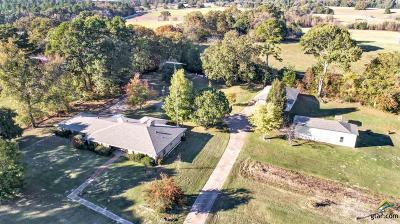 Whitehouse Single Family Home For Sale: 7617 Fm 346