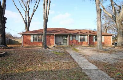 Tyler Single Family Home For Sale: 1810 Angy