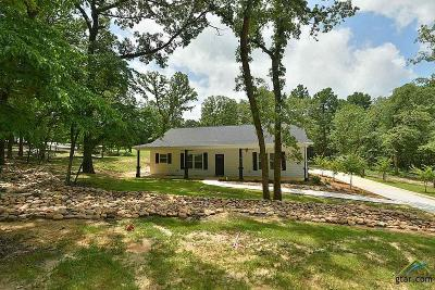 Mineola Single Family Home For Sale: 546 County Road 2317