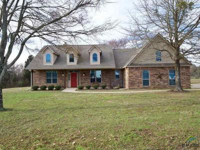 Lindale Single Family Home For Sale: 20087 County Road 482