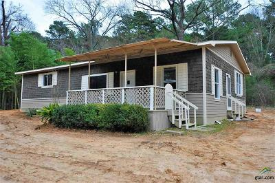 Flint Single Family Home For Sale: 19821 Eastern Hills Dr