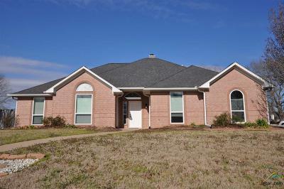 Flint Single Family Home For Sale: 19461 Sandhill Dr