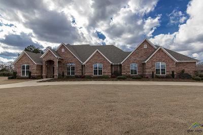 Tyler Single Family Home For Sale: 21822 Syrah Lane